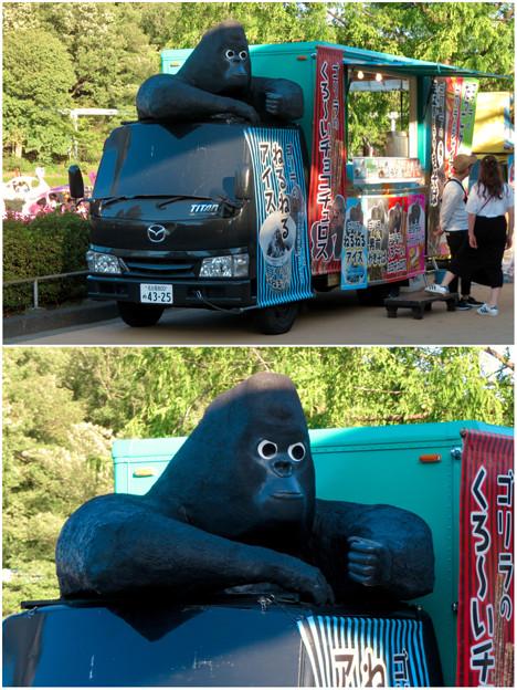 東山動植物園:ゴリラ推しのキッチンカー - 6(奇妙なゴリラ像)