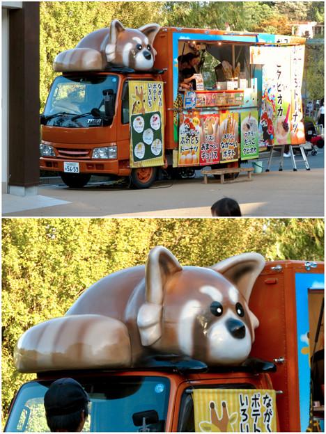 東山動植物園:ユーモラスなレッサーパンダのキッチンカー - 3