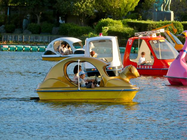 東山動植物園:黄金のコアラのペダルボート - 1