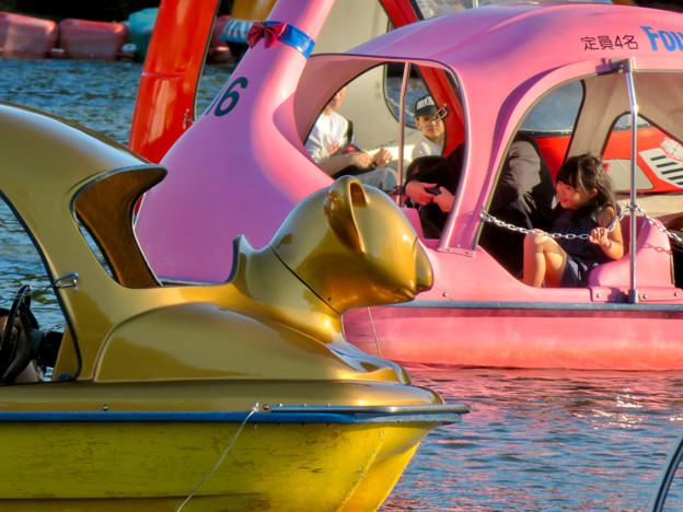 東山動植物園:黄金のコアラのペダルボート - 2
