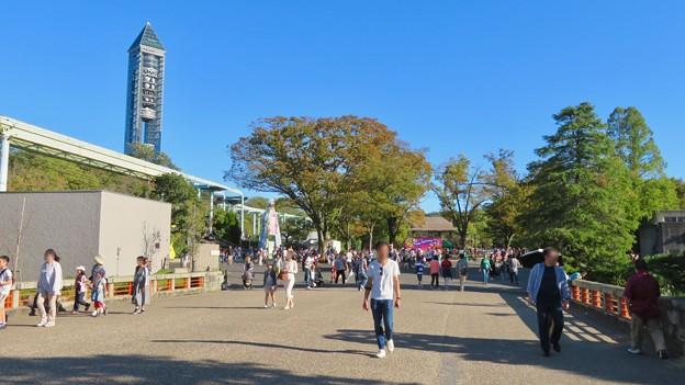 東山動植物園(2019年10月) - 2:大勢の人で賑わう台風一過の秋の園内