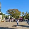 Photos: 東山動植物園(2019年10月) - 2:大勢の人で賑わう台風一過の秋の園内