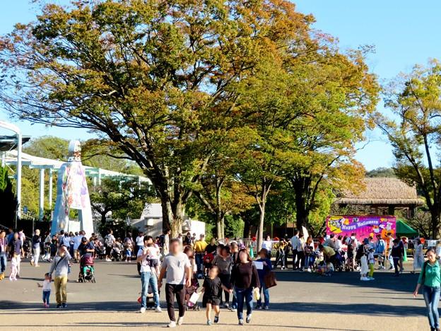 東山動植物園(2019年10月) - 3:大勢の人で賑わう台風一過の秋の園内