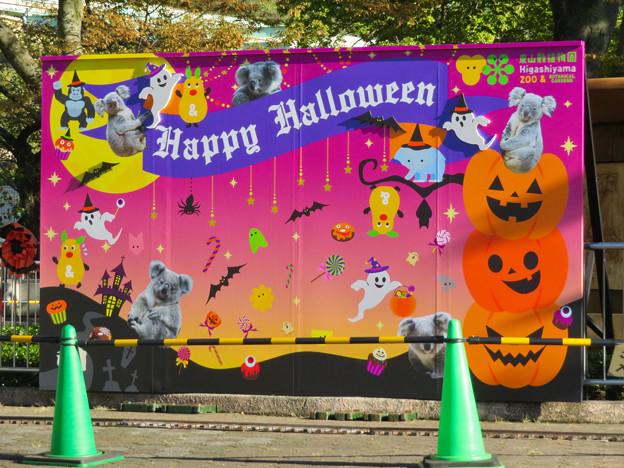 東山動植物園(2019年10月) - 5:ハロウィンの装飾