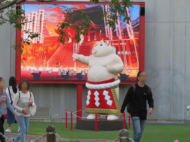 大須矢場とん横に豚のマスコット像と放送中のアニメ表示 - 1