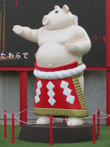 大須矢場とん横に豚のマスコット像と放送中のアニメ表示 - 3