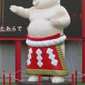 Photos: 大須矢場とん横に豚のマスコット像と放送中のアニメ表示 - 3