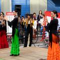 Photos: 大須大道町人祭 2019:フラメンコ(スペイン舞踊団DANZAK) - 5