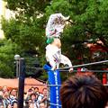 大須大道町人祭 2019:大須プロレス - 2