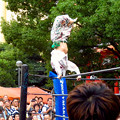 Photos: 大須大道町人祭 2019:大須プロレス - 2