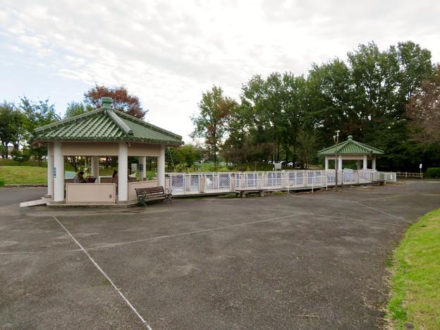 すいとぴあ江南:建物周辺にあるショウブ池 - 1