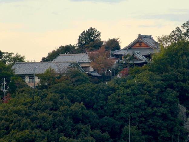 木曽川沿い(江南市側)から見た前渡不動山の上にある佛眼院 - 4