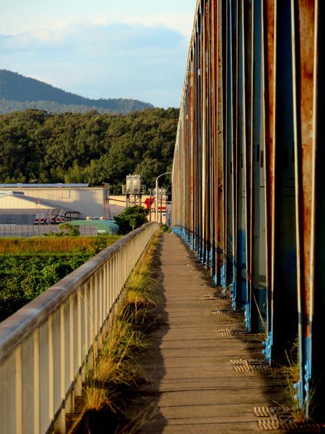 夕暮れ時の愛岐大橋 - 6:狭くて長い歩道部分