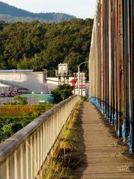 夕暮れ時の愛岐大橋 - 7:狭くて長い歩道部分