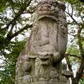 江南市草井町宮東の天神社 - 6:力強く口が閉じてた狛犬