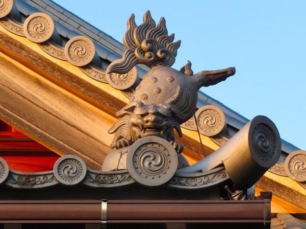 前渡不動山にある佛眼院 - 53:本堂の屋根の上にいた可愛らしい狛犬