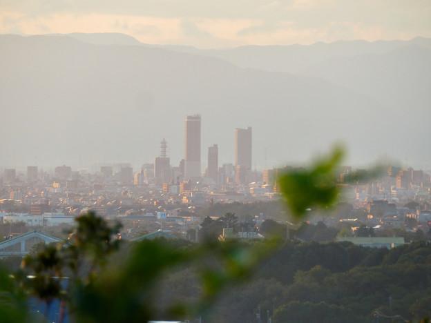 前渡不動山にある佛眼院から見た景色 - 16:山頂から見た岐阜駅周辺ビル群