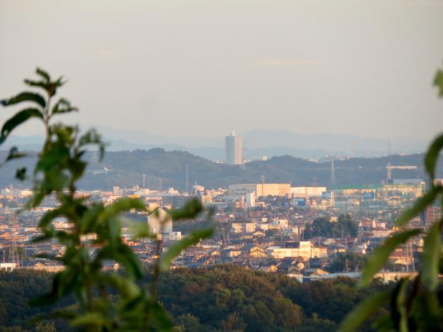 前渡不動山にある佛眼院から見た景色 - 18:山頂から見えたスカイステージ33