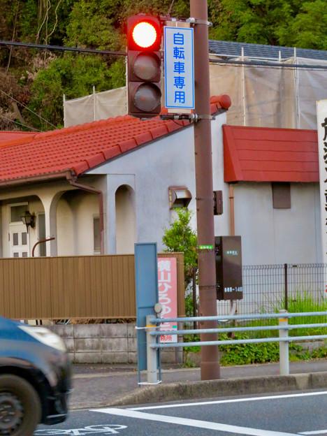 珍しい自転車専用の信号機(各務原市 浄水公園東交差点)- 2