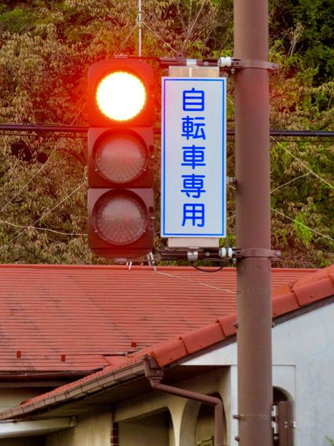 珍しい自転車専用の信号機(各務原市 浄水公園東交差点)- 6