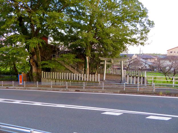 摩免渡 市杵島神社(いちきしまじんじゃ)- 3