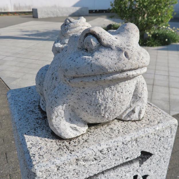 新加納駅前の「けろっと広場」- 3:カエルの像