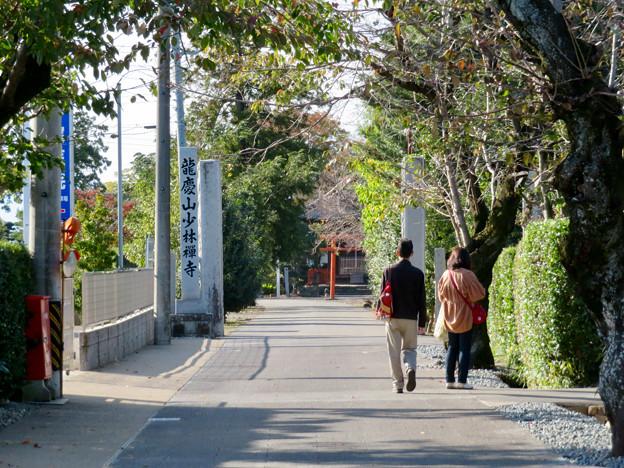 中山道 間の宿 新加納 No - 1:少林寺へと続く道