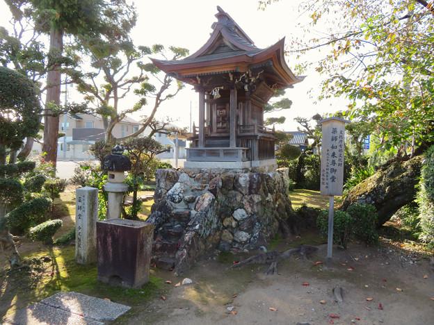 中山道 間の宿 新加納 No - 3:薬師如来尊御堂