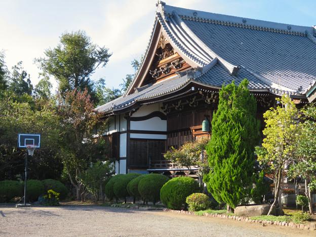 中山道 間の宿 新加納 No - 8:善休寺本堂とバスケットゴール