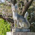 Photos: 中山道 間の宿 新加納 No - 16:少林寺の稲荷堂