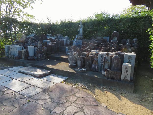 中山道 間の宿 新加納 No - 24:少林寺の沢山の仏像?や観音像?