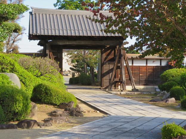 中山道 間の宿 新加納 No - 32.jpeg:少林寺の境内