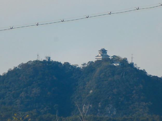 各務原市内西部(那加新加納町)から見た岐阜城・金華山 - 2