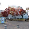 Photos: アクア・トトぎふ No - 3