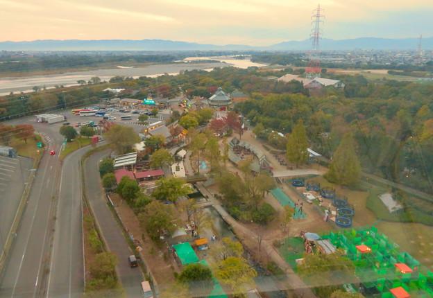 オアシスホイールから見た景色:オアシスパーク No - 1