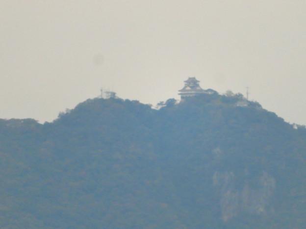 オアシスホイールから見た景色:岐阜城・金華山 No - 3