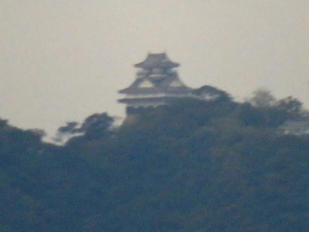 オアシスホイールから見た景色:岐阜城・金華山 No - 4