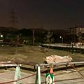 桃花台線の桃花台中央公園南側撤去工事(2019年11月14日):撤去後の整備地に植樹 - 1