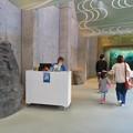アクア・トトぎふ No - 10:1階有料ゾーン入ってすぐの空間