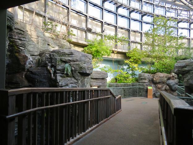Photos: アクア・トトぎふ No - 16:4階