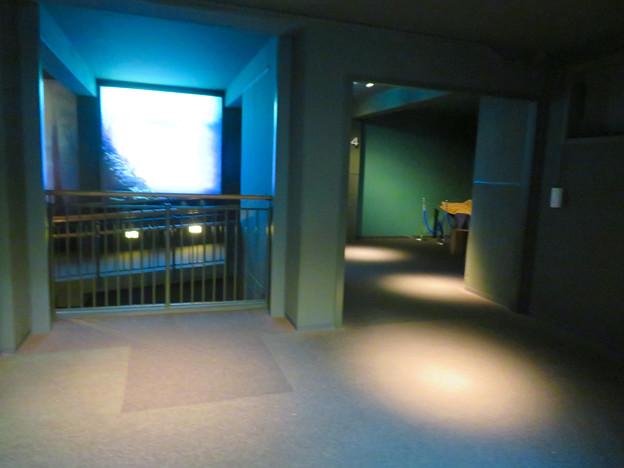 アクア・トトぎふ No - 39:4階から3階へと続くスロープ