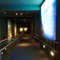Photos: アクア・トトぎふ No - 40:4階から3階へと続くスロープ