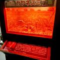Photos: アクア・トトぎふ No - 61:真っ赤なカヤネズミの入れ物