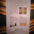 Photos: アクア・トトぎふ No - 63:若冲の鮎をモチーフにしたタイルアートの説明
