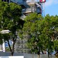 Photos: リニューアル工事中の久屋大通公園(2019年11月16日)- 11:テレビ塔の周りにも建物?それとも単なる工事用??