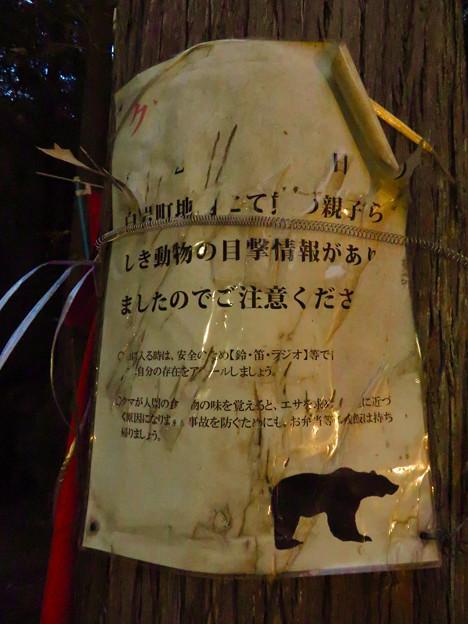 岩谷堂公園内 No - 11:「クマ出没注意」の張り紙