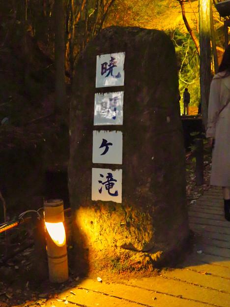 岩谷堂公園 紅葉ライトアップ(2019年11月17日)- 26