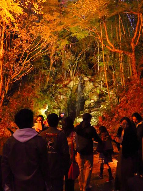 岩谷堂公園 紅葉ライトアップ(2019年11月17日)- 33