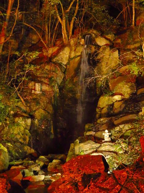 岩谷堂公園 紅葉ライトアップ(2019年11月17日)- 35