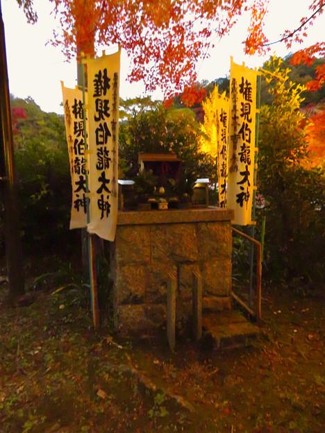 岩谷堂公園 紅葉ライトアップ(2019年11月17日)- 43